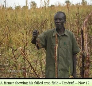 Farmer with failed crop