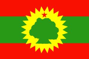 Oromo flag