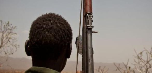 Sudan fighter