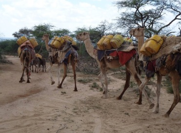 Ethiopia's hidden human rights abuses in the Ogaden – Africa