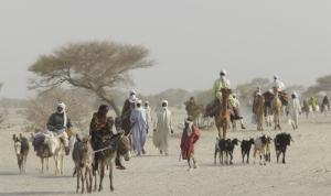 Pastoralists Chad