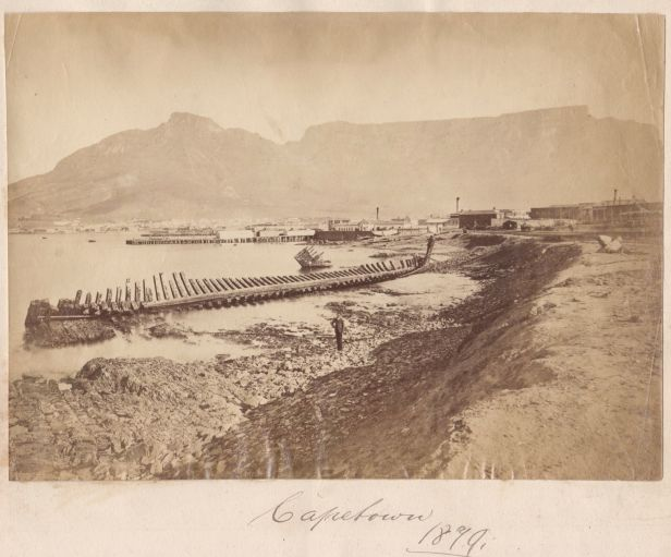 Cape Town docks 1879