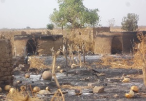 Aerial bombing destroys Toroje village in the Nuba Mountains, February 2014
