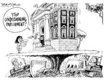 Zapiro ANC Parliament