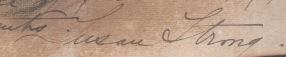 Susan Strong signature