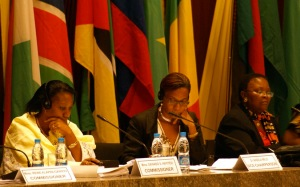 African Commission on Human Rights