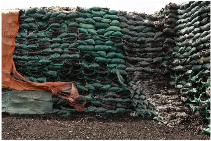 Somali charcoal