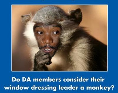 ANC propaganda