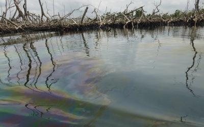 bille-nigeria-oil-spill-1