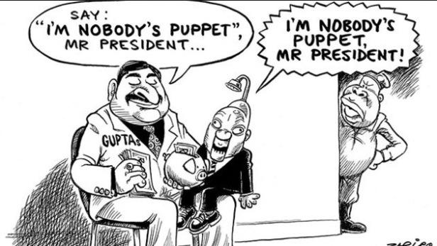 zuma-puppet