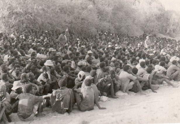 eplf-ethiopian-prisoners