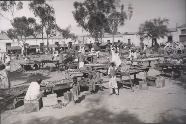 Asmara market 1935