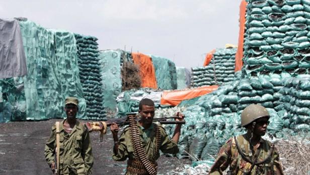 somali-charcoal
