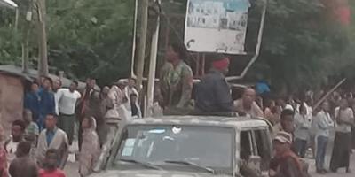 TDF recaptures Alamata